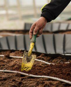 10 Plant Care Essentials