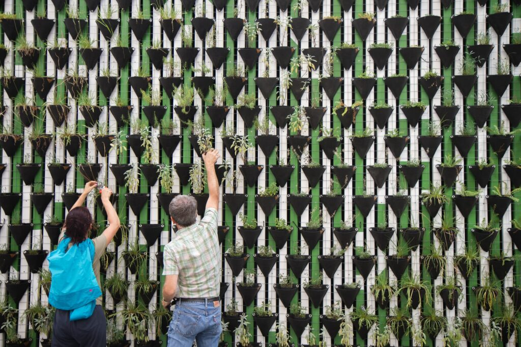 Two people work together to water a wall of plants