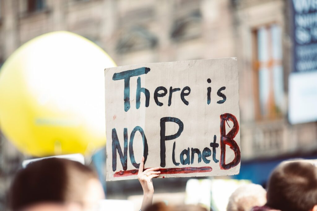"A sign at a protest says ""There is NO Planet B."